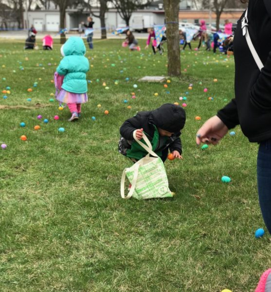 As soon as the hunt began, children ran to find as many eggs as they could before claiming their prize.
