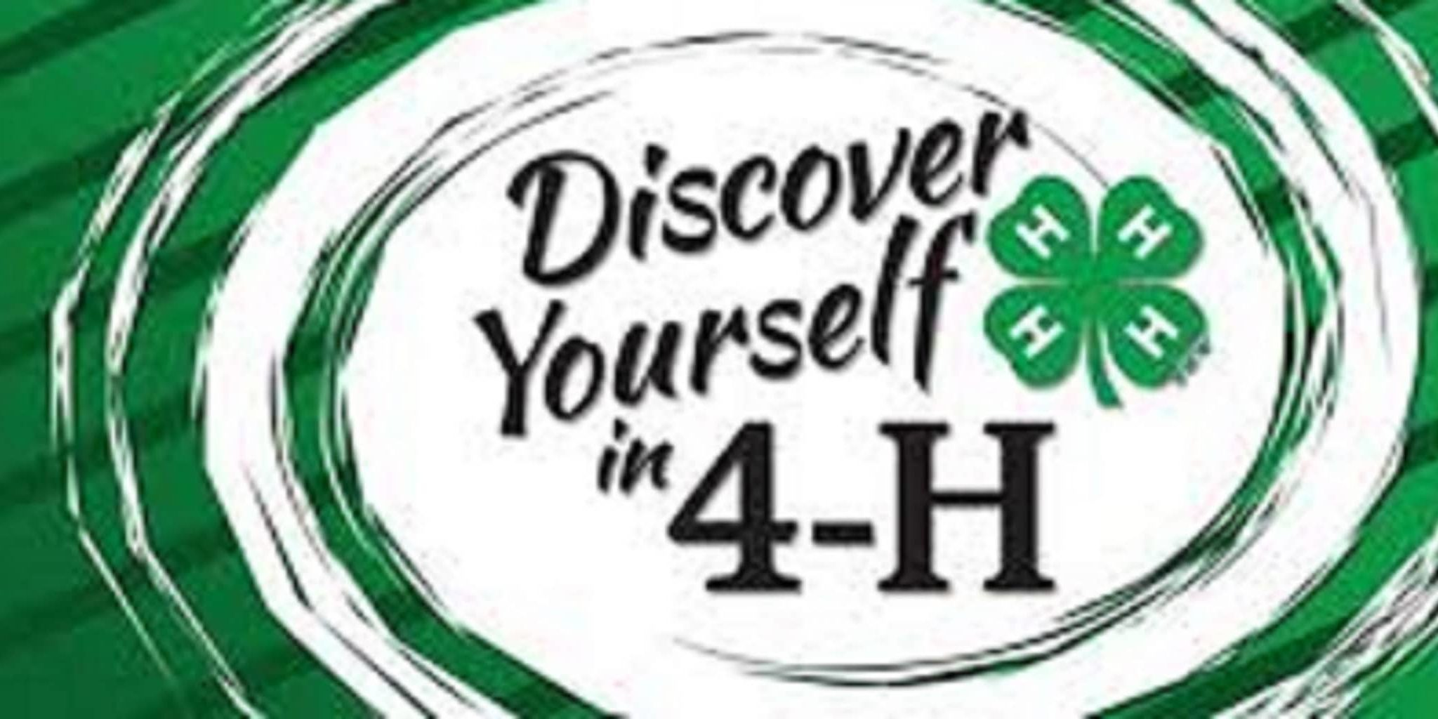 discover 4h resize